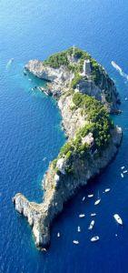 isla delfin
